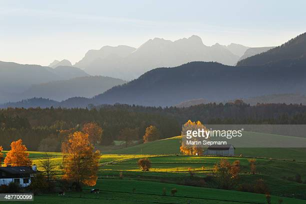 Autumn morning in the foothills of the Alps, view from Mt Aidlinger Hoehe, Aidling, Riegsee, Pfaffenwinkel region, Upper Bavaria, Bavaria, Germany