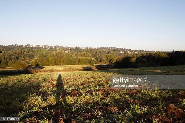 autumn morning walk - サットンコールドフィールド ストックフォトと画像