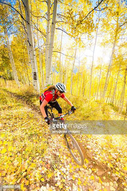 autumn mountain biking woman - aspen colorado stock photos and pictures