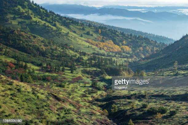 autumn mountain landscape in early morning - isogawyi stock pictures, royalty-free photos & images