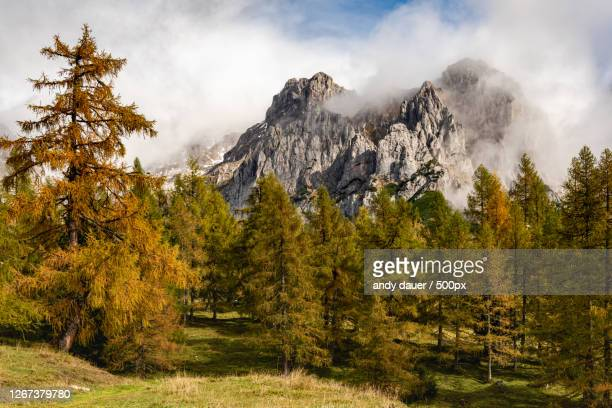 autumn mountain landscape, schladming, austria - andy dauer stock pictures, royalty-free photos & images