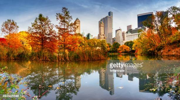 Autumn New York City Skyline