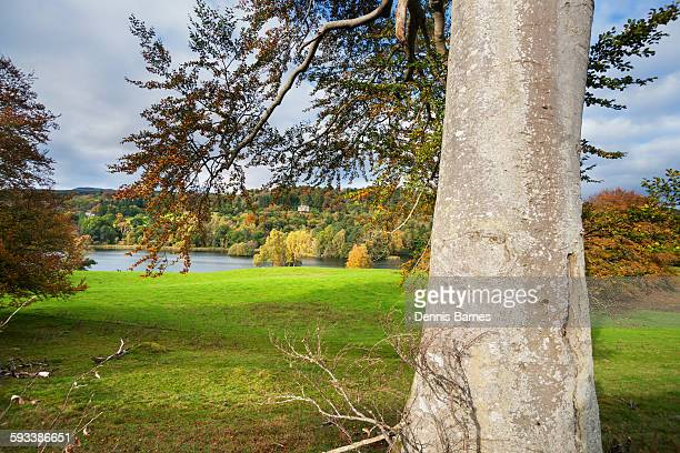 autumn ochtertyre house, loch monzievaird - crieff stock pictures, royalty-free photos & images