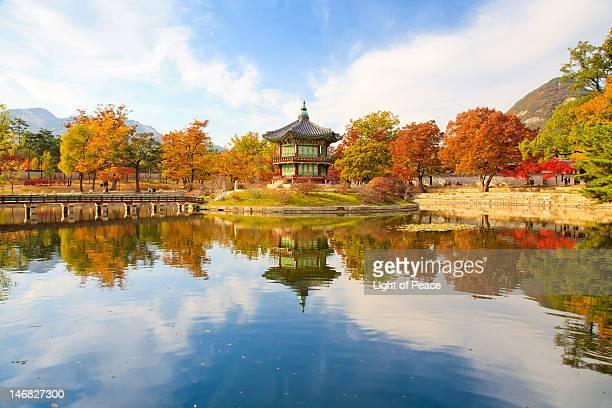 autumn of korean royal palace - gyeongbokgung stock photos and pictures