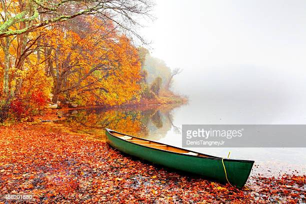autumn on cape cod - four seasons stock pictures, royalty-free photos & images