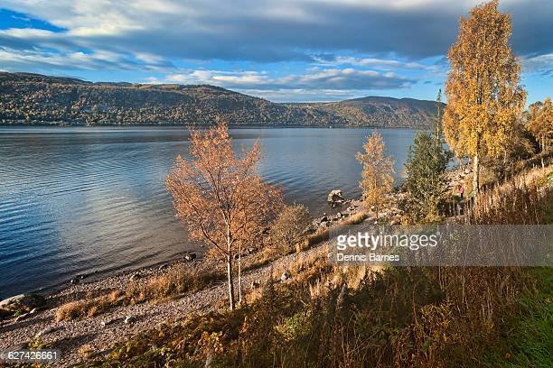 Autumn on Loch Ness, near Dores, Inverness, UK