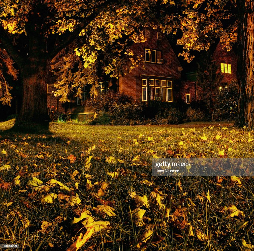 Autumn on the campus of McMaster University. : Stock-Foto