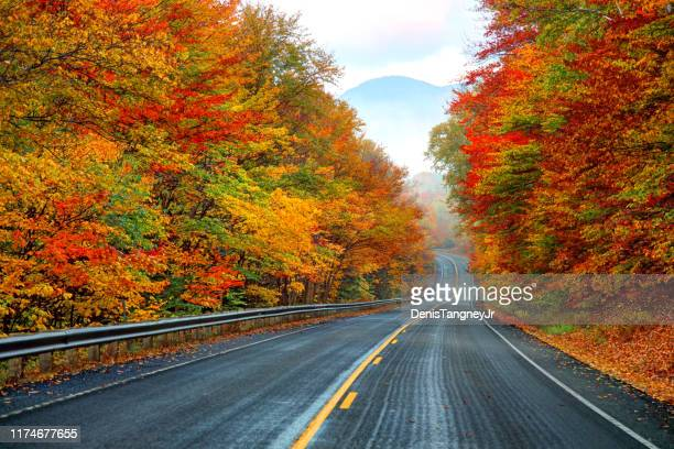 autumn on the kancamagus highway in new hampshire - autumn leaf color stock pictures, royalty-free photos & images