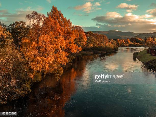 autumn on the river spey, aviemore - scotland imagens e fotografias de stock