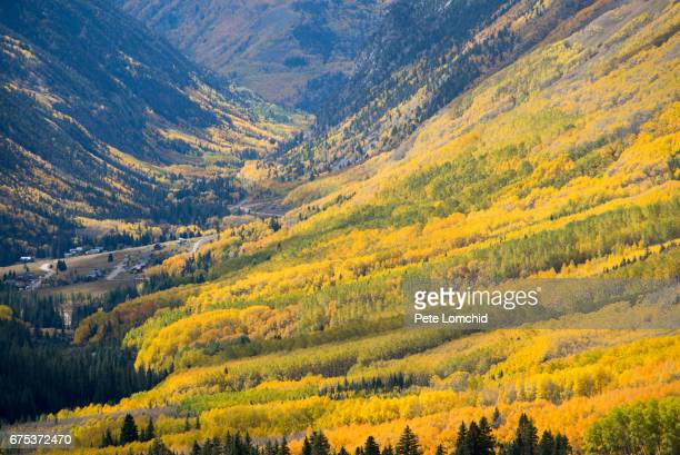 Autumn ophir pass Colorado