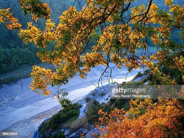 Autumn Over the Avon Gorge in Bristol.
