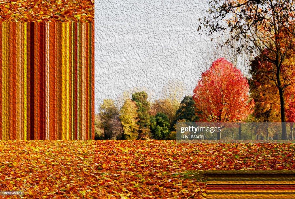 Autumn parc with horizontal stripes, : Stock Photo