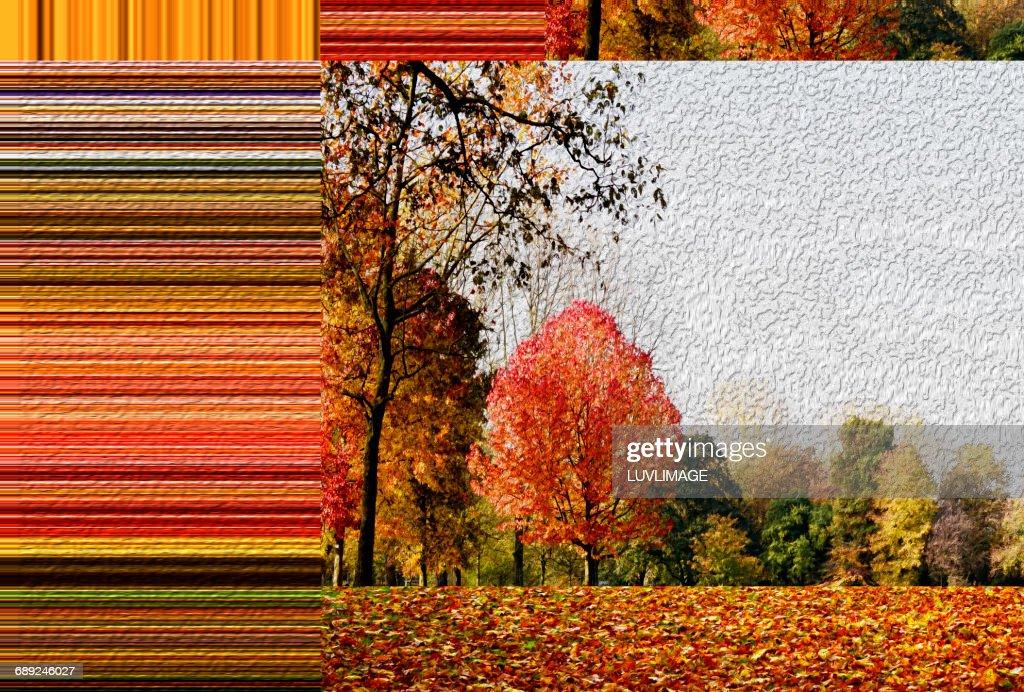 Autumn parc with horozontal color stripes : Foto de stock