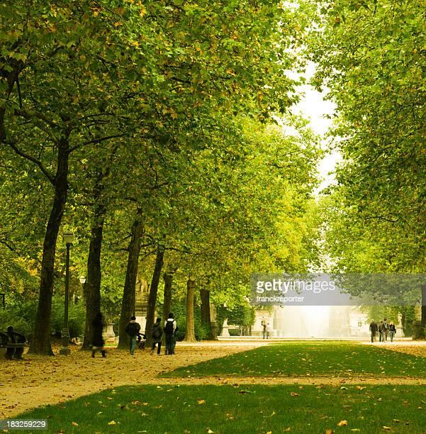 Automne Parc de Bruxelles, Belgique