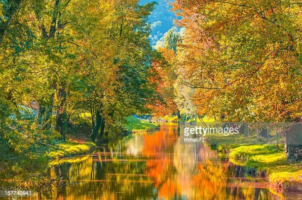 Parc automne