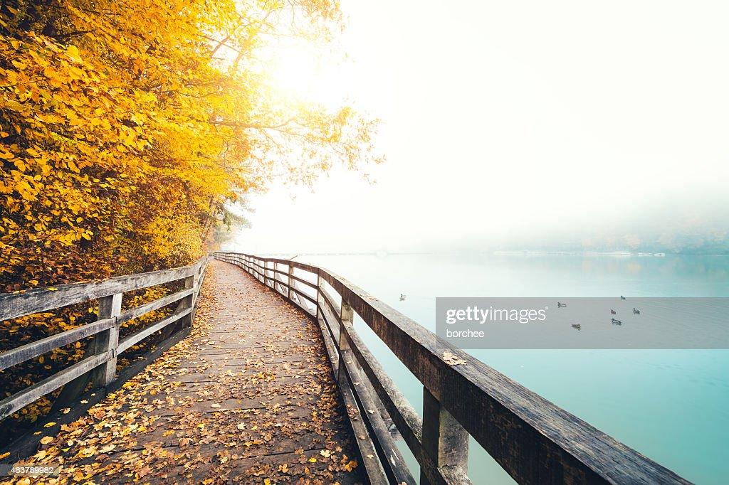 Autumn Path Along The Lake : Stock Photo