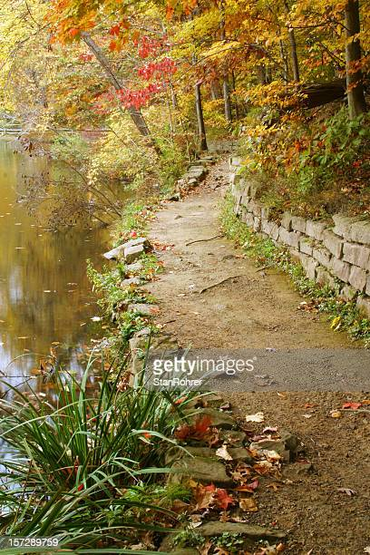 Autumn Path At The Pond, Footpath - Youngstown, Ohio