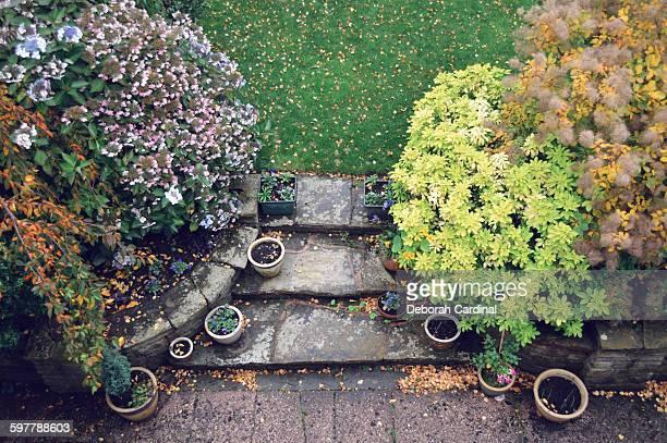 autumn patio - サットンコールドフィールド ストックフォトと画像