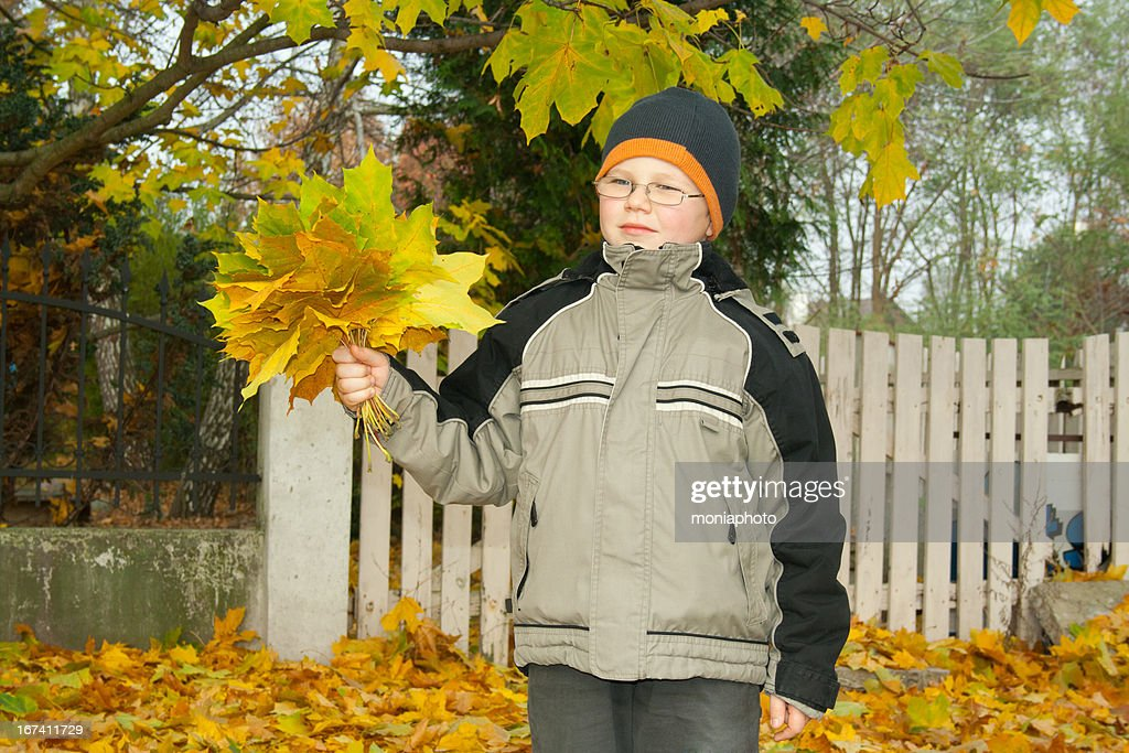 Autumn : Stockfoto
