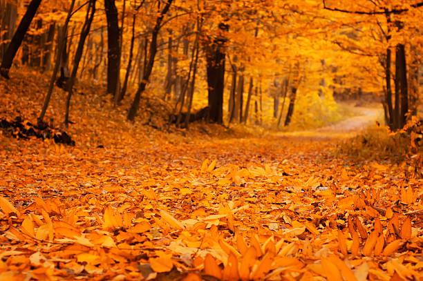 October - 612×407