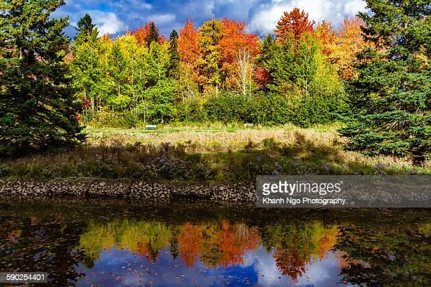 autumn - moncton stock photos and pictures