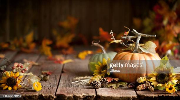 autumn pumpkin background on wood - autunno foto e immagini stock