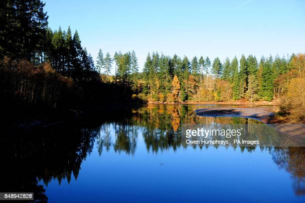 A autumn reflection at Kielder Water Forest Park Newcastle Northumberland the Park is home to the biggest manmade lake in northern Europe and the...