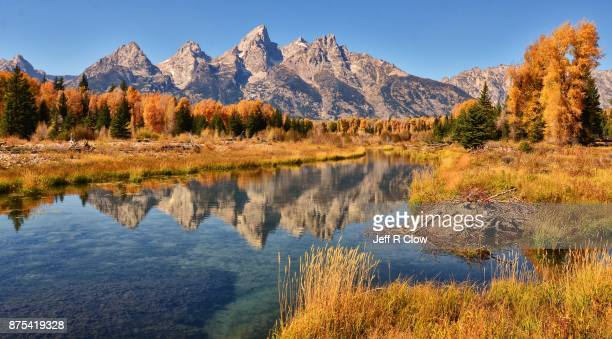 autumn reflection in wyoming - jackson hole stock pictures, royalty-free photos & images