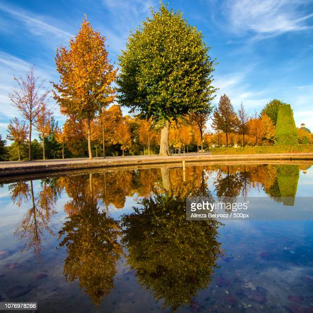 Autumn reflections II