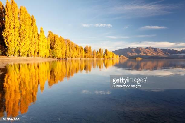 reflexões de outono no lago wanaka, nova zelândia - wanaka - fotografias e filmes do acervo