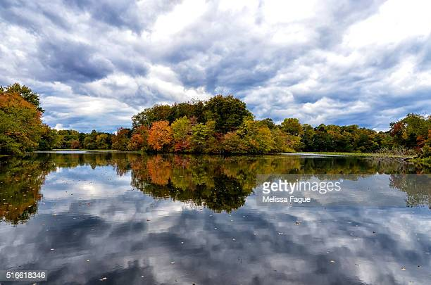 Autumn Reflections: Landscape Photograph of a pond with tree fall foliage