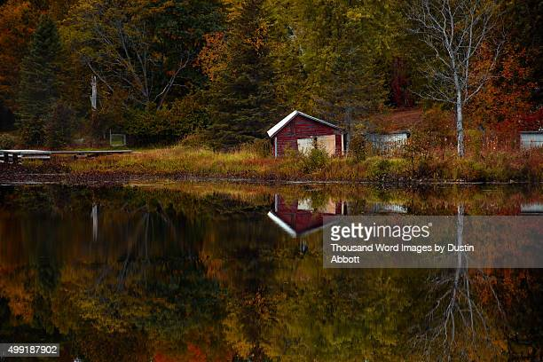Autumn Relections