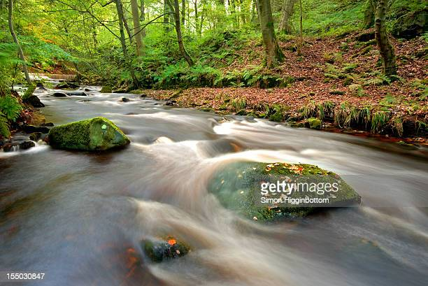 autumn river, halifax, west yorkshire, uk - simon higginbottom stock pictures, royalty-free photos & images