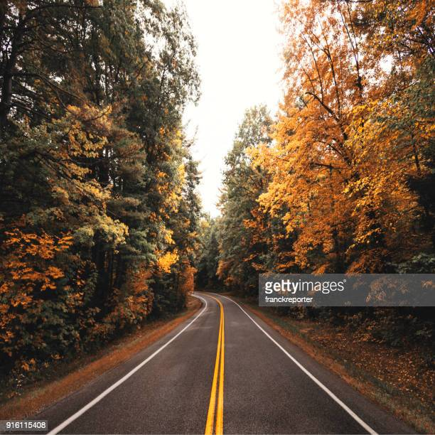 autumn road in new england - country road stock pictures, royalty-free photos & images
