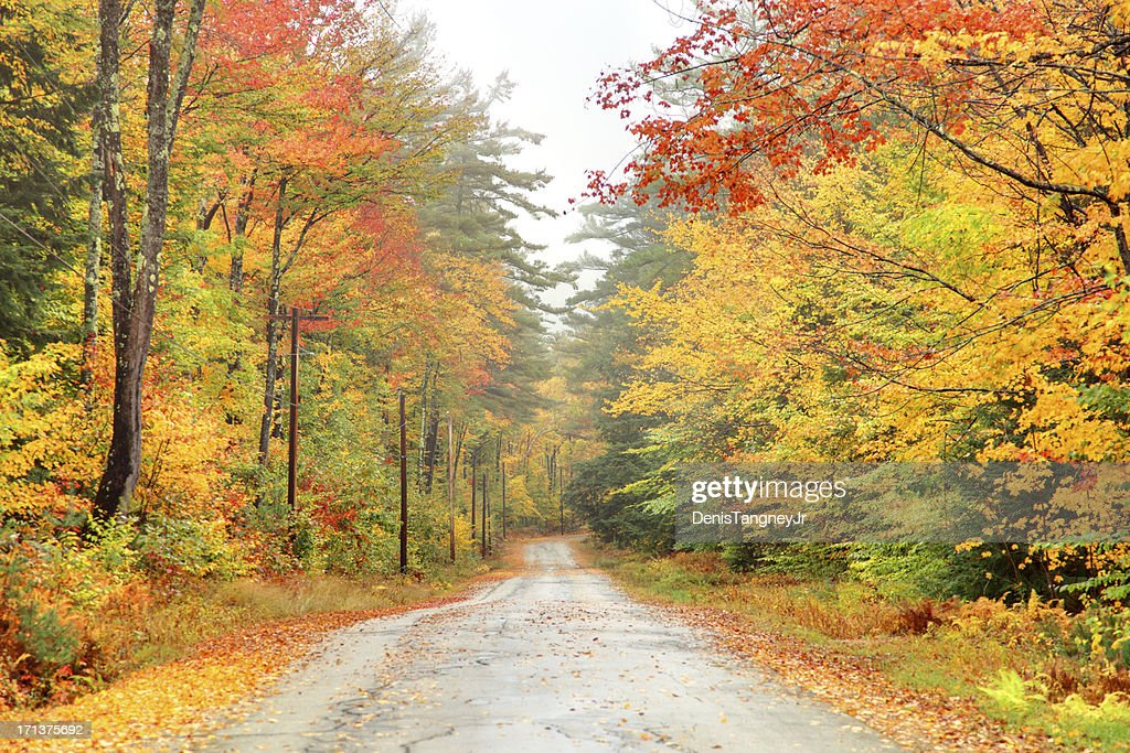 Autumn Road in New Hampshire : Stock Photo