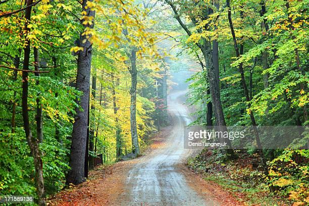 Autumn Road in New Hampshire