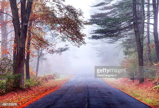 Autumn road in the Quabbin Reservoir Watershed region of Massachusetts