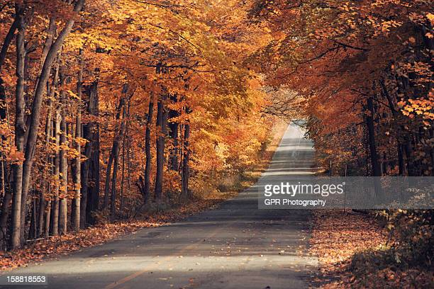autumn road - south bend indiana stock-fotos und bilder
