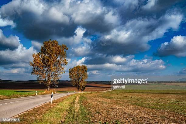 Route d'automne