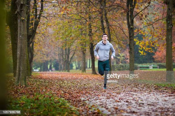 autumn run in the park - scoring run stock pictures, royalty-free photos & images