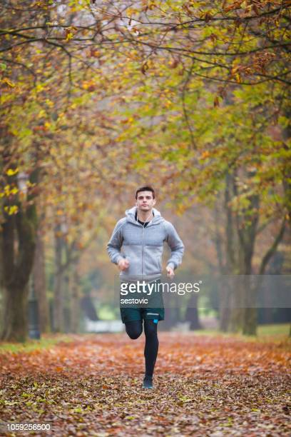 autumn run in the park - three wheeled pushchair stock pictures, royalty-free photos & images