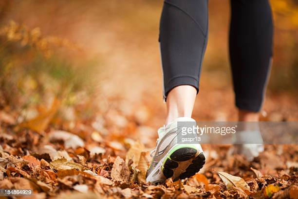 autumn running - gray shoe stock pictures, royalty-free photos & images