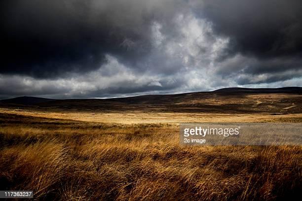 Autumn, Sally Gap, Co Wicklow, Ireland