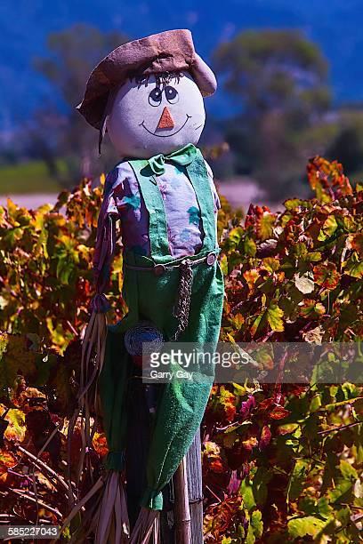 autumn scarecrow - scarecrow faces stock photos and pictures