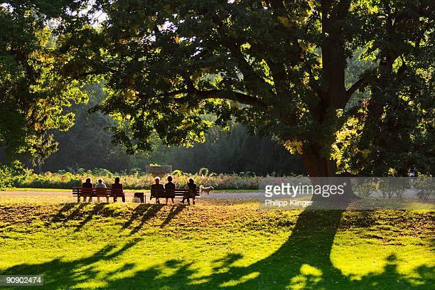 Autumn scene at a park