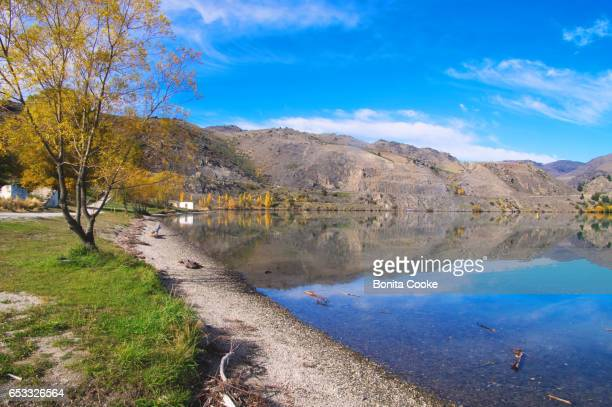 Autumn scene at the lakeside of Lake Dunstan, Cromwell, Central Otago