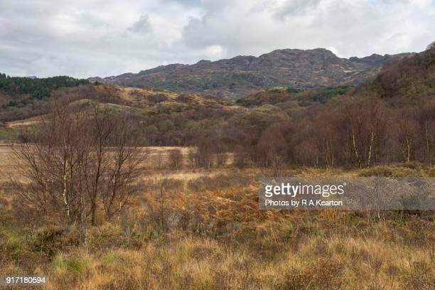 Autumn scenery at Llyn Dinas, Snowdonia national park, Wales