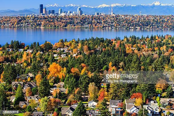 autumn scenery, bellevue washington - bellevue skyline stock pictures, royalty-free photos & images