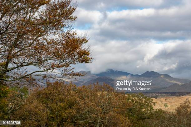 Autumn scenery in Snowdonia national park, North Wales