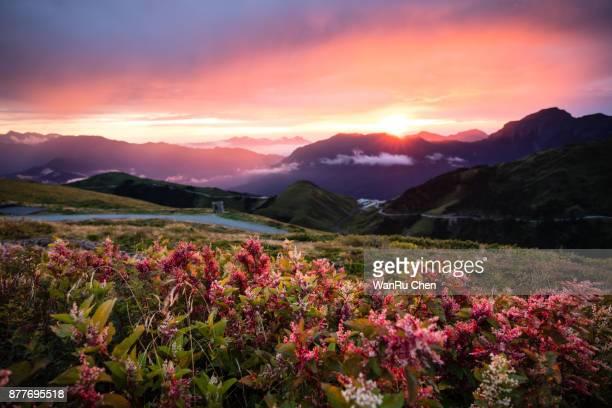 Autumn scenery of Hehuan Mountain hillside at sunrise